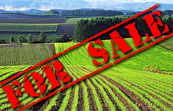 Ukrayna, Rusya'dan korunmak için topraklarını Amerikalılara satabilir