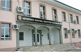 Pendik Veteriner Kontrol Enstitüsü aşı üretim çalışmasına dahil edildi