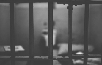Almanya'ya kaçan Esed'in 'işkence şefi' 58 cinayetle suçlandı