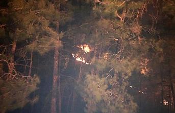 Antalya'da orman yangınları 74 dönümü yaktı