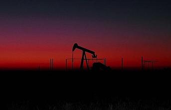 Fiyatlarındaki çöküşün ardından ABD 75 milyon varil ham petrol alacak