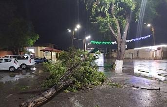 Özbekistan'da şiddetli rüzgar..30 yaralı bir ölü