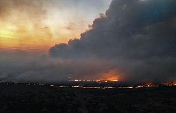 Ukrayna'da Çernobil nükleer tesis yakınındaki yangın söndürüldü