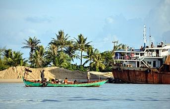 Virüs yüzünden ölenin olmadığı Kamboçya, pirinç ve balık ihracatını yasakladı