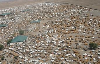 23 bin kişi Nijer'e sığındı