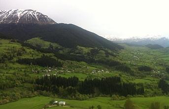 Ardanuç ve Şavşat ilçelerinde kar yağdı