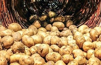 Patates ithalatına gözetim uygulaması..Alt sınır ne oldu?