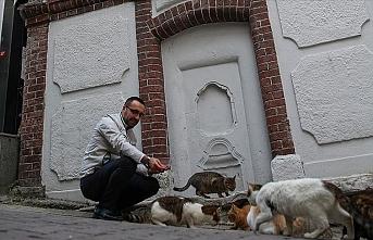 Salgın günlerinde yiyecek bulamayan kedi ve martılara mahalle imamı sahip çıktı