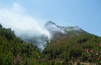 Antalya'da çıkan yangında 3 hektar orman alanı zarar gördü