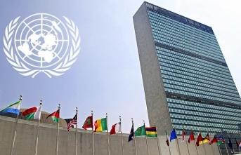 BM İnsan Hakları uzmanlarından 'ABD'deki polis şiddetine' kınama