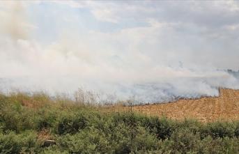 Tel Abyad'da çıkan anız yangınında 1 kişi öldü, 3 kişi yaralandı