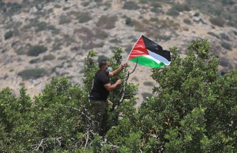 Arap ülkelerinden uluslararası topluma 'İsrail'in ilhak planına karşı etkili tutum' çağrısı