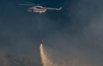 Bakan Pakdemirli: 12 ilde çıkan 19 orman yangınından 15'i kontrol altına alındı