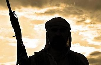 Nijerya'da 3 ayda 392 silahlı çete üyesi yakalandı