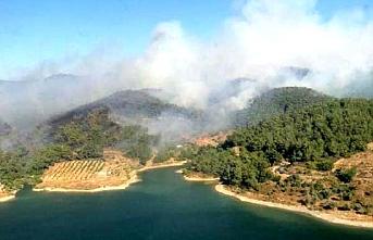 Seferihisar'da makilik ve ormanlık alanda yangın