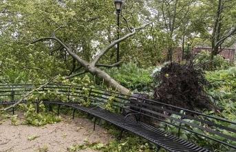 ABD'nin güney kıyılarına yaklaşan iki tropik fırtına endişeye neden oldu