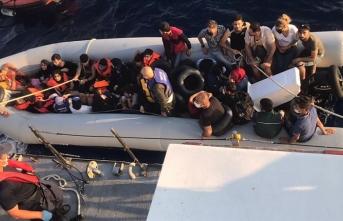 Aydın ve Muğla'da Türk kara sularına itilen 80 sığınmacı kurtarıldı