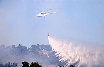 Çanakkale Bayramiç'de orman yangını çıktı