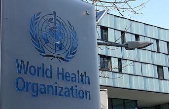 Dünya Sağlık Örgütü Nedir, Ne Değildir?