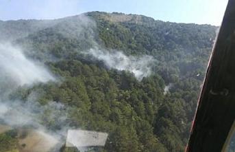 Kaz dağlarında yangın.. 5 dönüm kül oldu