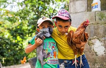 Kolombiya'nın pandemi sürecindeki tarımsal faaliyet mücadelesi