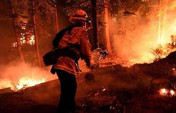 ABD'nin batısındaki orman yangınlarında ölü sayısı 15'e yükseldi