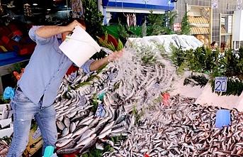 Av  yasağı bitti, balıklar tezgahlardaki yerini aldı