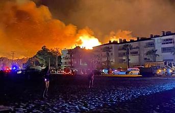 Ayvalık'ta 80 hektar alan yandı