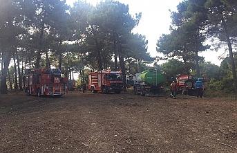 Beykoz'da ormanlık alanda yangın
