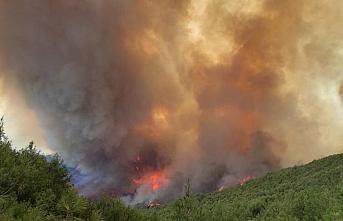Hatay'daki orman yangınına havadan müdahale tekrar başladı