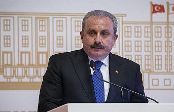 Mustafa Şentop: Çok sınırlı olarak bulunması gerektiği kanaatindeyim