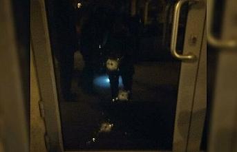 Azerbaycan Fahri Konsolosluğuna silahlı saldırı