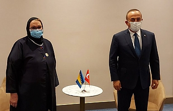 Çavuşoğlu Nijer'de Bosnalı mevkidaşı ile görüştü