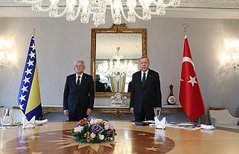 Cumhurbaşkanı Erdoğan, Caferoviç'i kabul etti