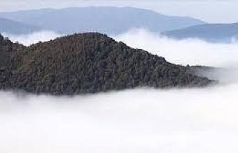 Doğu Marmara ve Batı Karadeniz'de sis etkili oluyor