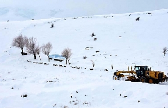 Iğdır'ın dağ köylerinde kış zorlu geçiyor