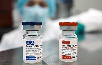 Avusturya'dan Sputnik V ve CoronaVac aşısı kararı