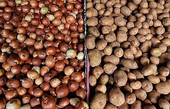 Türkiye'den 124 bin ton patates, 220 bin ton soğan ihraç edildi