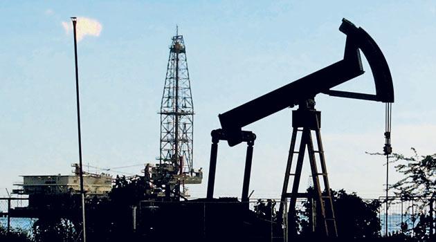 TPAO'ya Batman'da petrol işletme ruhsatı