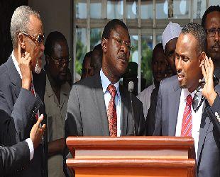 Kenya ve Somali, Şebab'a karşı birleşti