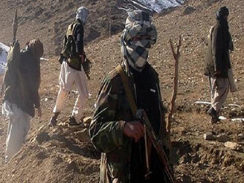 Taliban'dan görüşme isteğine yalanlama