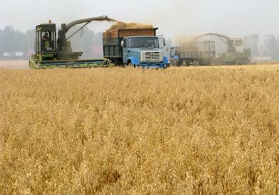 Kuraklık 27 ilde buğday rekoltesini etkiliyor
