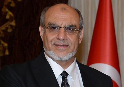 Tunus, Cibali'nin cumuhrbaşkanlığı adaylığını tartışıyor