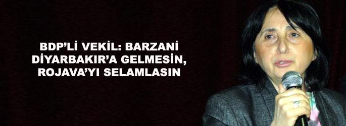 BDP'li vekil: Rojava'da Barzani değil Öcalan'ın çizgisi hakim