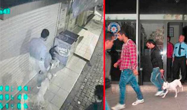 Aynı suça Türkiye'de 3, Fransa'da 12 ay hapis!