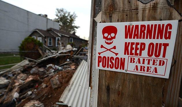 ABD'deki heyelanda sekiz ölü