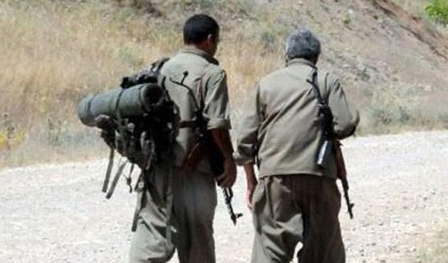 PKK, köye inip BDP için oy istedi
