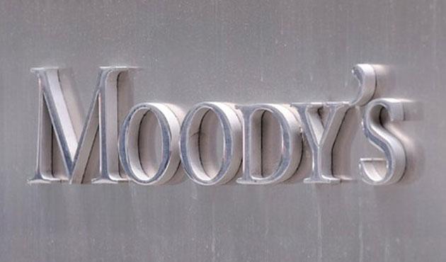 Fevzi Öztürk: Moody's'in gerekçeleri sağlam değil