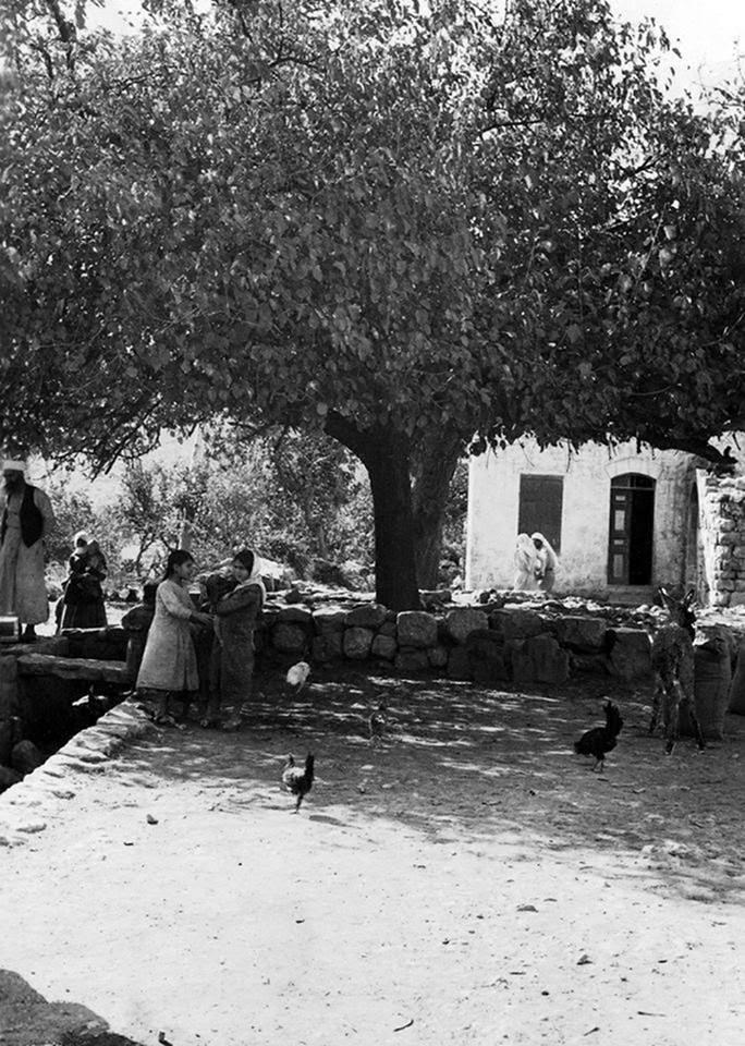 Deir Yasin'i hatırlamak / Paul Eisen