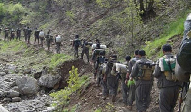 Bir PKK'lı teslim oldu, biri de yakalandı